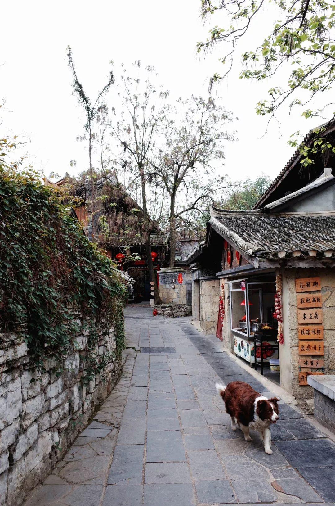 """贵阳入围""""2019中国最具幸福感城市""""候选名单! 文旅 第17张"""