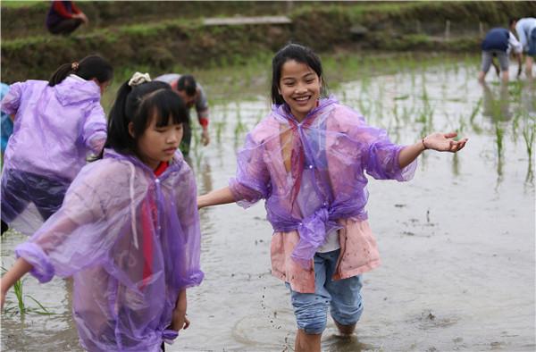 三都县周覃镇布依同胞欢度四月八 打造农旅一体乡村振兴新模式 文旅 第6张